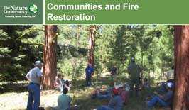 community-fire-restoration