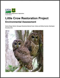 little-crow-cover