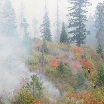 Cascadia Prescribed Fire Training Exchange (TREX) Update